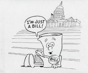 A Bill's path to Law